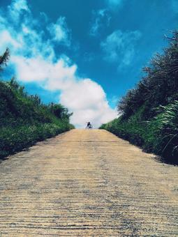 Summer road (bicycle)