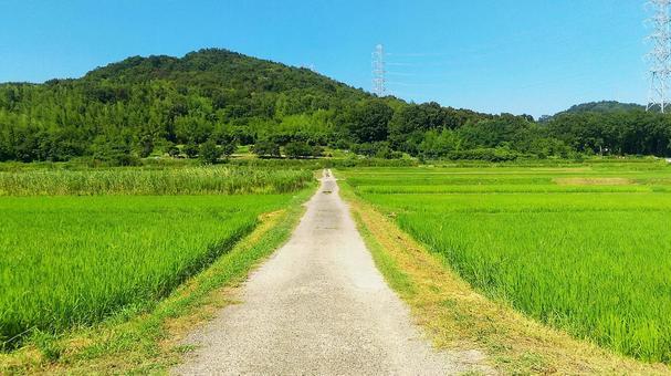 Road and horizon