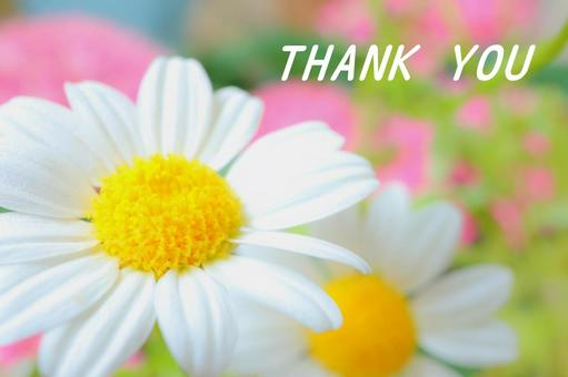 Thank you Thank you Thank you Thank you Flower card