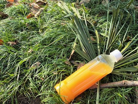 在綠色的草地上的塑料瓶裡的橙汁