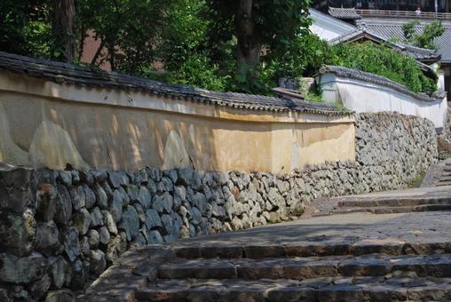 Nara Shrine and Templar 2