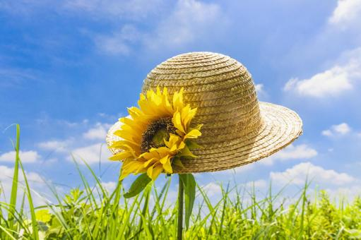 夏草和向日葵草帽1