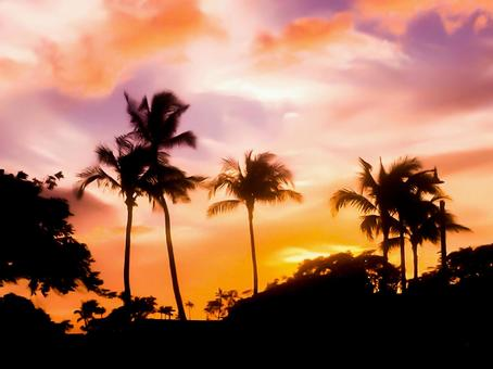 Romantic hawaiian landscape