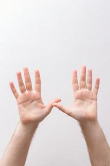 展会手掌8