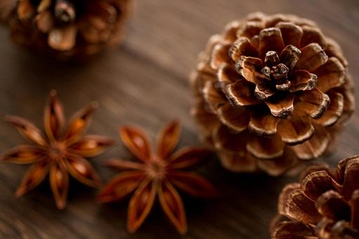 Pinecone and star anise