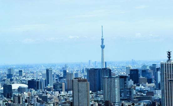 Seen from Tokyo Sky Tree, Tokyo cityscape, Tokyo Metropolitan Government Building