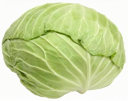 Cabbage (PSD with transparent background and clipping path)
