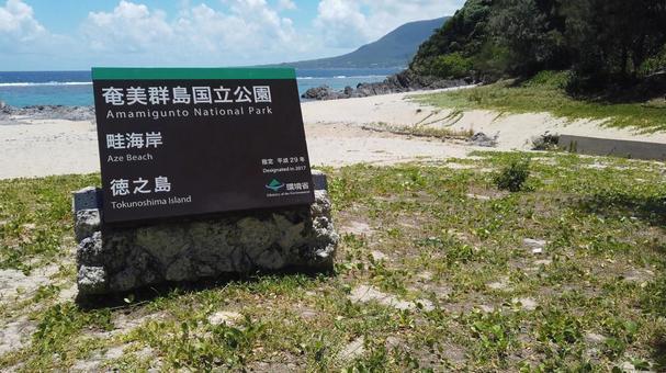 Aze Prince Beach Amami Islands Tokunoshima