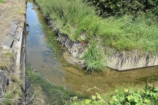 생물이 서식하는 농업 용수로