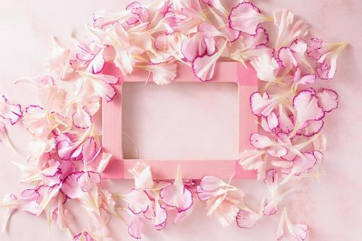 핑크 카네이션 프레임