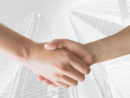 Contract established - handshake 03