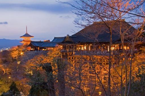 Night view of Kyoto Kiyomizu Temple