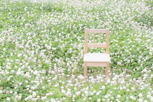 In the field of clover