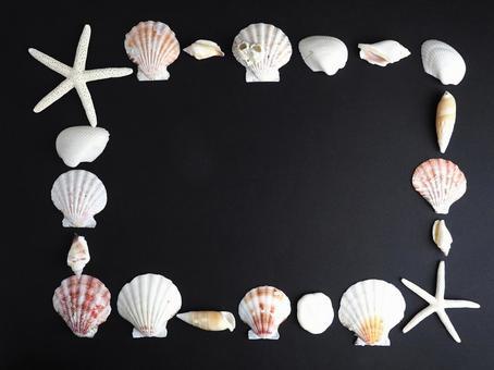 Frame 【Seashell and Starfish frame】
