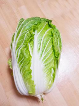 Typical winter vegetables Chinese cabbage 0514