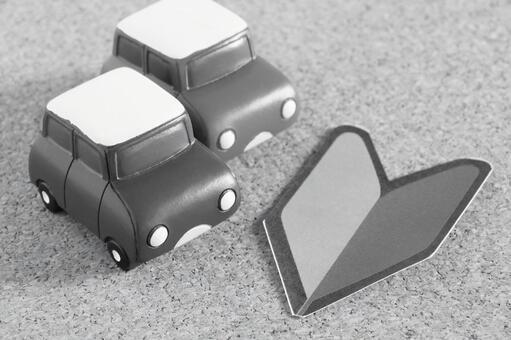 Beginner driver monochrome