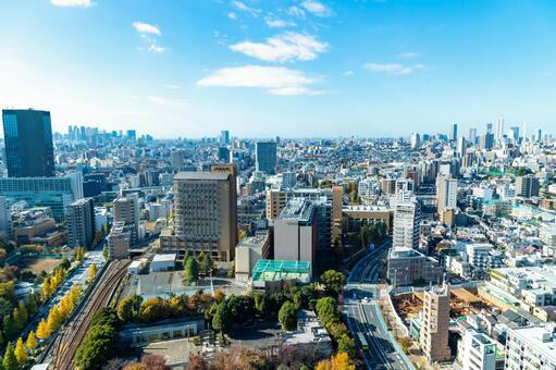 View of the cityscape of Tokyo