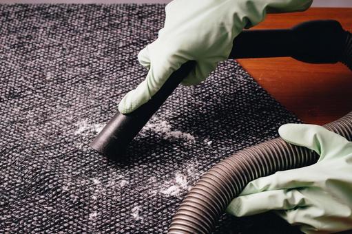 카펫 청소 5