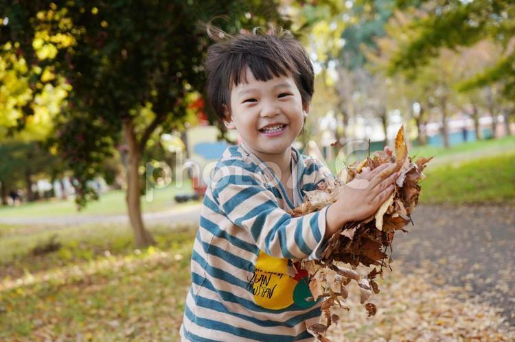 秋の紅葉と落ち葉で遊ぶ子供の写真