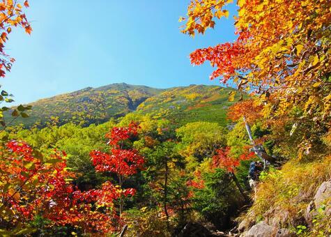 秋の山と紅葉 0324