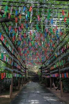 Kaeru Temple