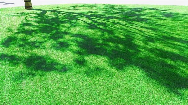The shade of a tree that shines on a bright green artificial turf on a sunny day