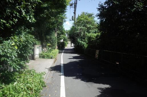 Brush road