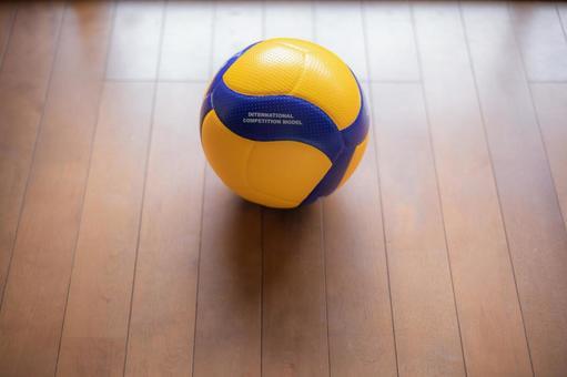 體育館排球官方用球