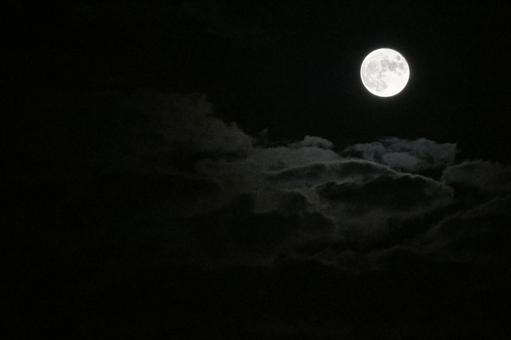 """Night Cloud... """"Mr. Moonlight"""""""