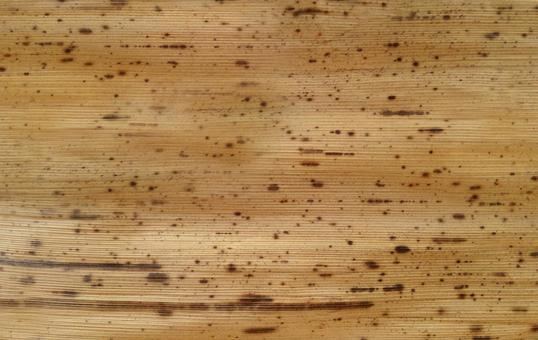 Bamboo skin