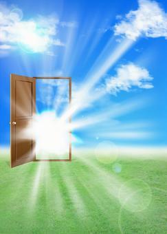 Door flash