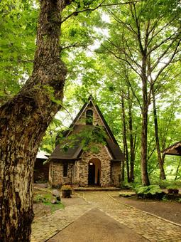 Church of the Forest