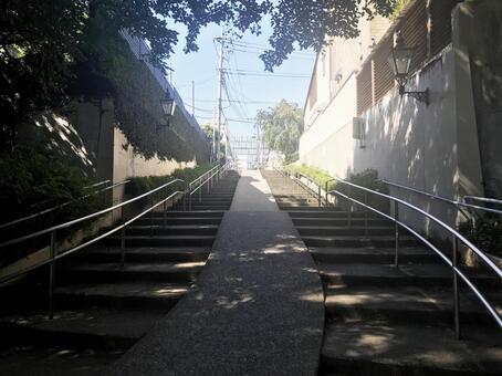 Inokashira Park