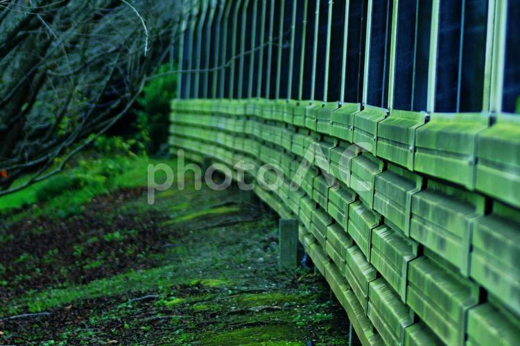 苔むした高速道路の防音壁の写真