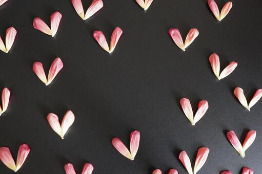 [Text space] Petal heart e without letters