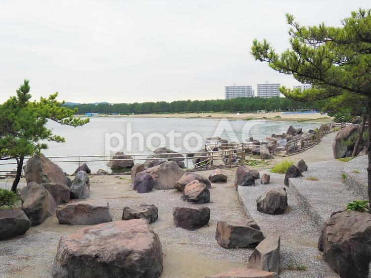 海の公園【横浜】金沢区の写真