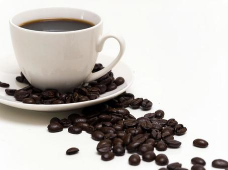 커피 콩 14