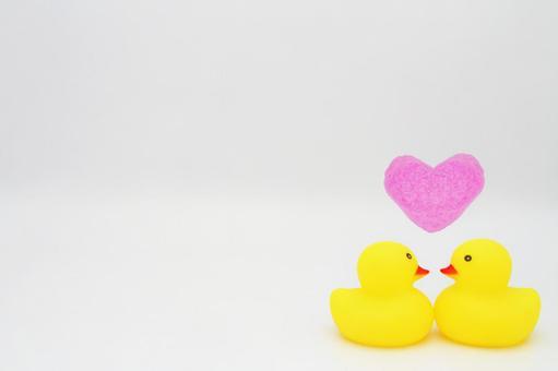 Love love duck