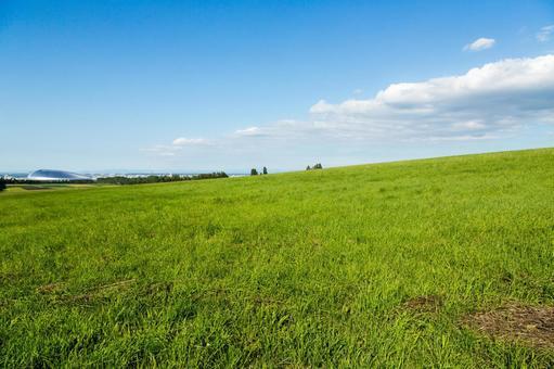 Prairie and Plateau