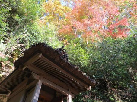 Kamakura in autumn colors