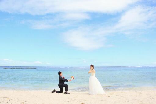 Photo Wedding Proposal