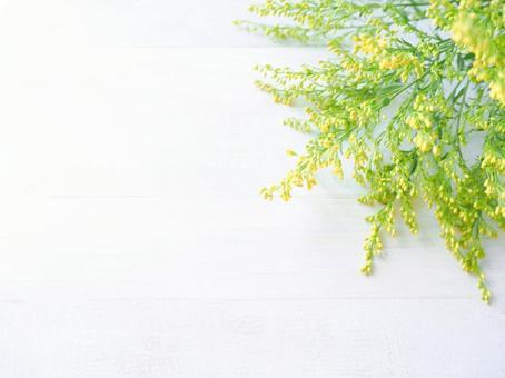 可愛的黃色小花士兵(右上)壁紙