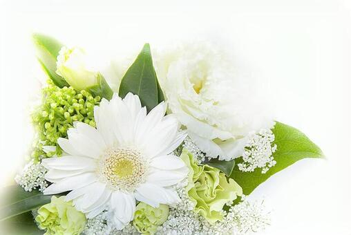 Gerbera White Arranging Bouquet 180729