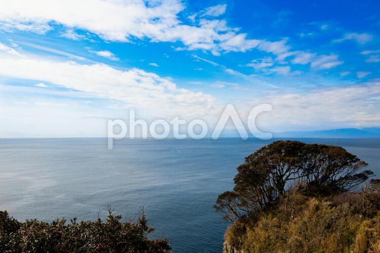 江ノ島の亀ヶ岡広場からの景色の写真