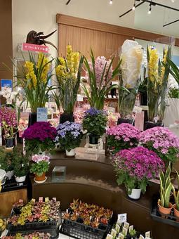 Flower shop # 4 Vertical position