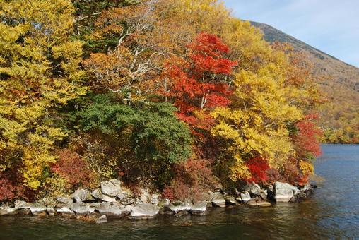 Autumn leaves of Lake Chuzenji