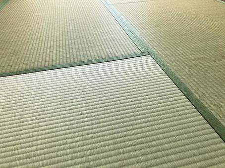 Blue tatami