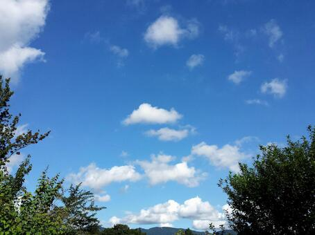 Sky and green ①