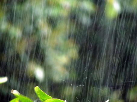 Rainy season rain muscle