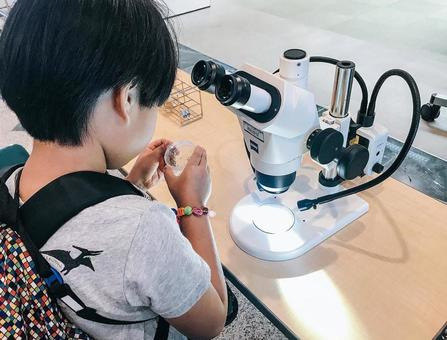 A boy examined with a microscope